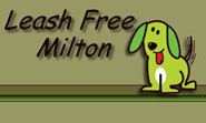 Leash free dog park in Milton